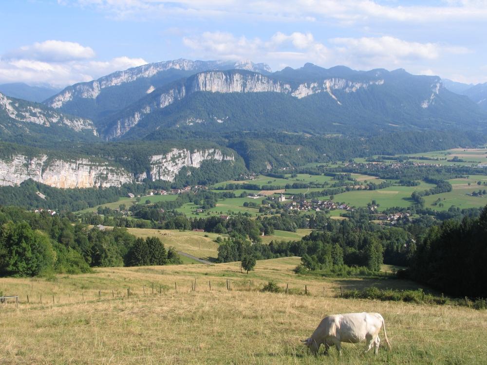 St Ch la G_Chanterel_2012 07 11_2